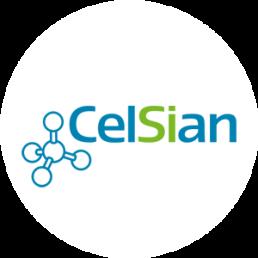 GoFastForward Deelnemer - Celsian